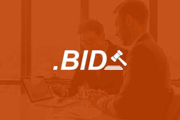 .bid domain promotion
